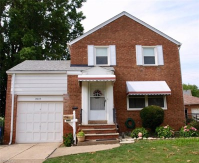 17815 Hillgrove Ave, Cleveland, OH 44119 - MLS#: 4019599