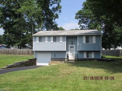 1007 Milton Blvd, Newton Falls, OH 44444 - MLS#: 4019610