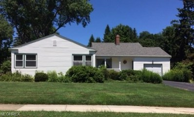 133 Moffet Ave, Chardon, OH 44024 - MLS#: 4019690