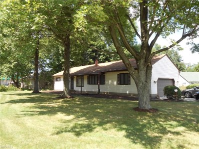 217 North Rd, Warren, OH 44484 - MLS#: 4019702