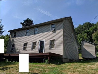 49477 McCoy Avenue, East Liverpool, OH 43920 - #: 4019764