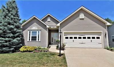 535 Shallow Creek Cir, Northfield, OH 44067 - MLS#: 4019825