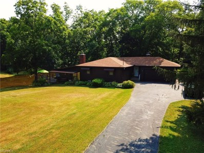 4682 Rootstown Rd, Ravenna, OH 44266 - MLS#: 4020028