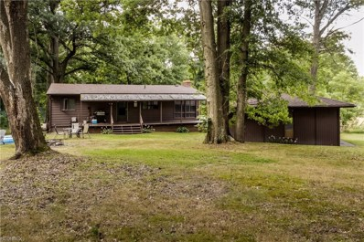 4714 Rootstown Rd, Ravenna, OH 44266 - MLS#: 4020046