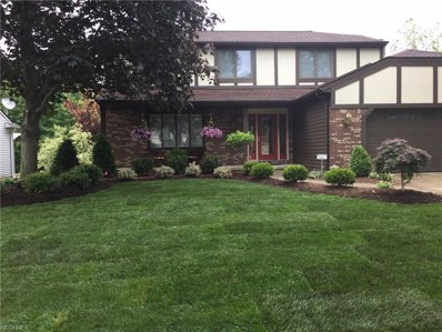 18011 Spyglass Hill Dr, Strongsville, OH 44136 - MLS#: 4020100