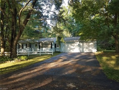 3948 West Dr, Rootstown, OH 44272 - MLS#: 4020127