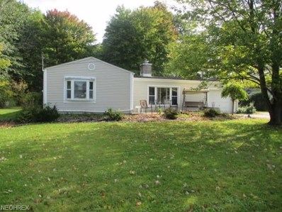 3525 S Raccoon Rd, Canfield, OH 44406 - #: 4020386