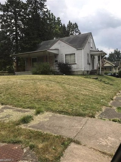 207 E Auburndale Ave, Youngstown, OH 44507 - MLS#: 4020425