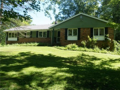 13445 Sperry Rd, Chesterland, OH 44026 - MLS#: 4020476