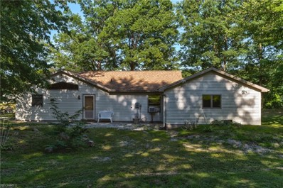 1072 Evening Star Drive, Roaming Shores, OH 44085 - #: 4020514