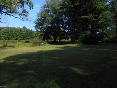 Youngstown Kingsville, Vienna, OH 44473 - MLS#: 4020519