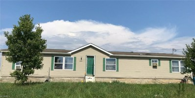 7953 St Route 516 NORTHWEST, Dundee, OH 44624 - MLS#: 4020572