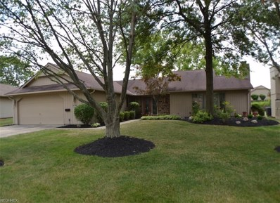 21441 Little Brook Way, Strongsville, OH 44149 - MLS#: 4020785