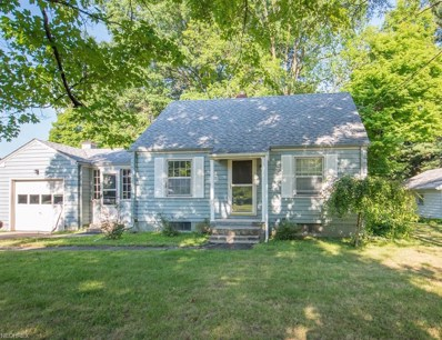 339 S Broad St, Canfield, OH 44406 - MLS#: 4020840