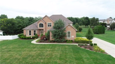 8502 Ivy Hill Dr, Poland, OH 44514 - MLS#: 4021009