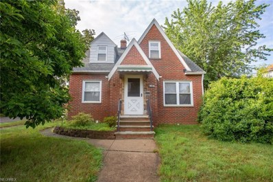 18712 Chickasaw Ave, Cleveland, OH 44119 - MLS#: 4021262