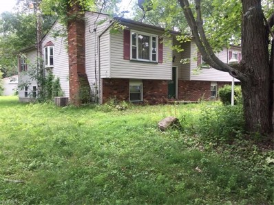 1224 Airport, Warren, OH 44481 - MLS#: 4021300