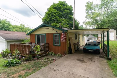 215 Lakota Ave, Akron, OH 44319 - MLS#: 4021525