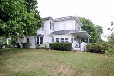 4001 S Union Ave, Alliance, OH 44601 - MLS#: 4021758