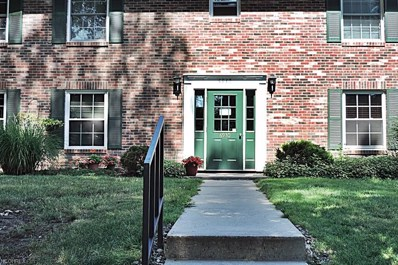 6930 Carriage Hill Dr UNIT 203, Brecksville, OH 44141 - MLS#: 4021846