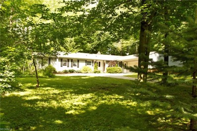 15198 Hook Hollow Rd, Novelty, OH 44072 - MLS#: 4022100