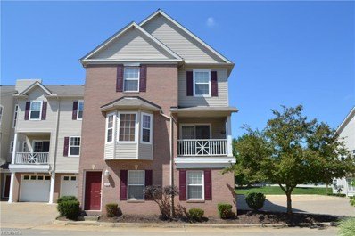 806 Tollis Pky UNIT 806, Broadview Heights, OH 44147 - MLS#: 4022157
