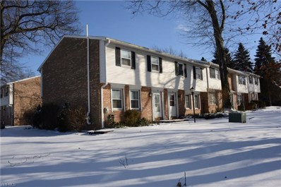 132 S Main St UNIT B10, Munroe Falls, OH 44262 - MLS#: 4022356