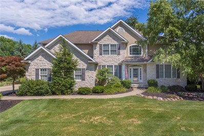 6285 Highland Meadows Dr, Medina, OH 44256 - MLS#: 4022461
