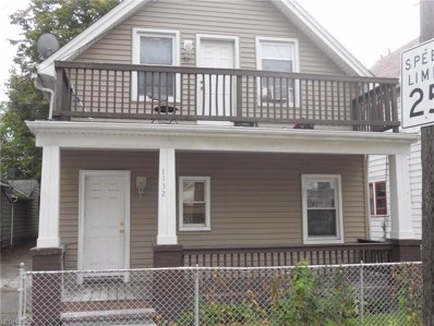 1132 E 66th St, Cleveland, OH 44103 - MLS#: 4022549