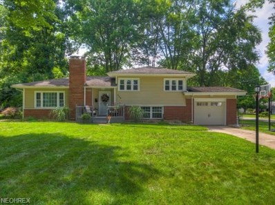 236 Evergreen Dr, Poland, OH 44514 - MLS#: 4022572