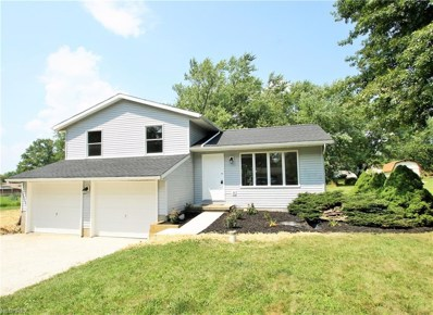 4135 Tapper Rd, Norton, OH 44203 - MLS#: 4022702
