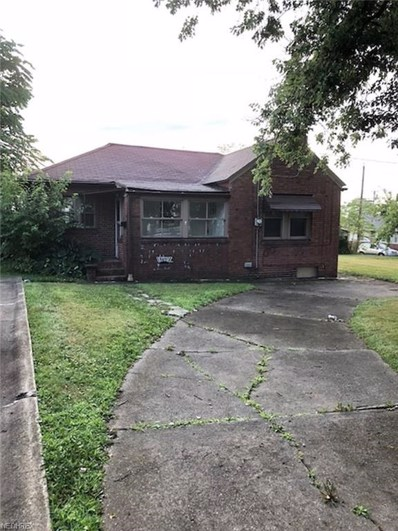 407 W Heights Avenue, Youngstown, OH 44509 - #: 4022800