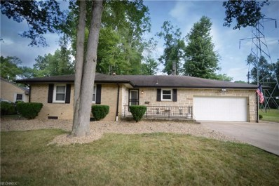 770 Truesdale Rd, Youngstown, OH 44511 - MLS#: 4023227