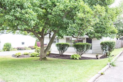 211 S Edgehill Ave, Youngstown, OH 44515 - MLS#: 4023431