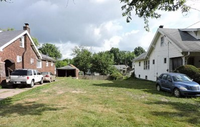 342 E Lucius, Youngstown, OH 44507 - MLS#: 4023482