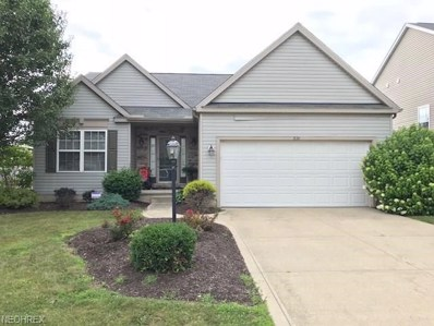 876 Queens Gate Way, Wadsworth, OH 44281 - MLS#: 4023599