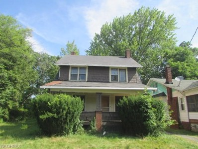 446 W Ravenwood Ave, Youngstown, OH 44511 - MLS#: 4023779