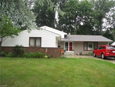 341 Michigan Ave, Elyria, OH 44035 - MLS#: 4023943