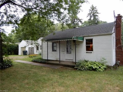 261 Euclid Ave, Wadsworth, OH 44281 - MLS#: 4024105