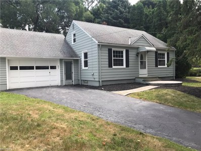 319 Miller Ct, Painesville, OH 44077 - MLS#: 4024204