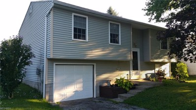 318 Stewart Ave NORTHWEST, Warren, OH 44483 - MLS#: 4024223