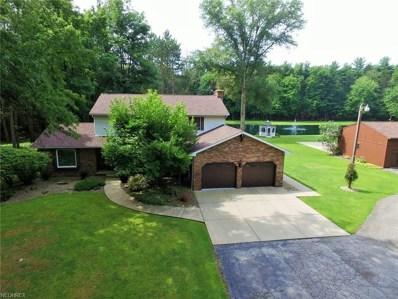 14701 Robinson Rd, Newton Falls, OH 44444 - MLS#: 4024322