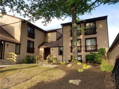 1135 Canyon View Dr UNIT 402, Sagamore Hills, OH 44067 - MLS#: 4024732