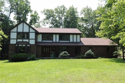 2968 Arborry Hill Dr, Richfield, OH 44286 - MLS#: 4024892
