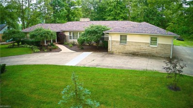 215 Annis Rd, South Amherst, OH 44001 - MLS#: 4025161