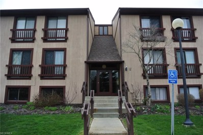 1115 Canyon View Rd UNIT 101, Sagamore Hills, OH 44067 - MLS#: 4025173