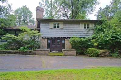 9101 Sherman Rd, Chesterland, OH 44026 - MLS#: 4025174