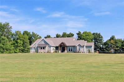 1221 Riffel Road, Wooster, OH 44691 - #: 4025358