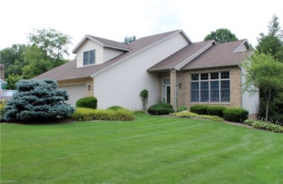 1443 Country Ln, Orrville, OH 44667 - MLS#: 4025385