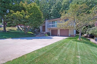 7004 Donna Rae Dr, Seven Hills, OH 44131 - MLS#: 4025469